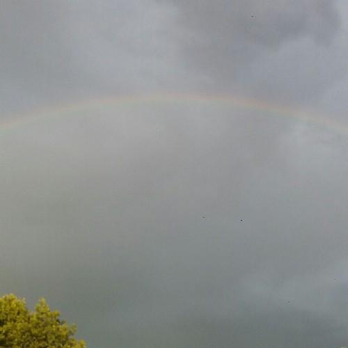 Rainbow: 197