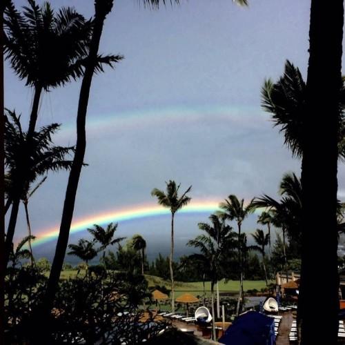 Rainbow: 224