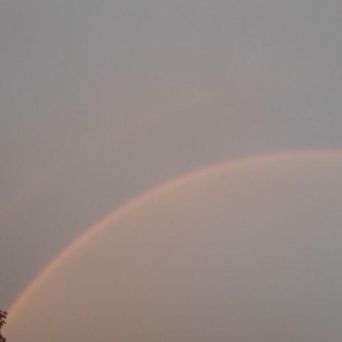 Rainbow: 262
