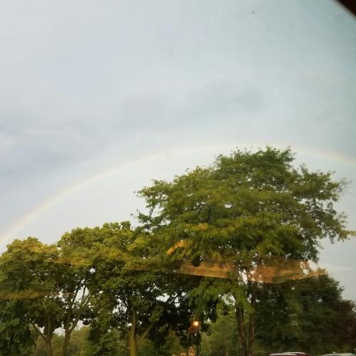 Rainbow: 146
