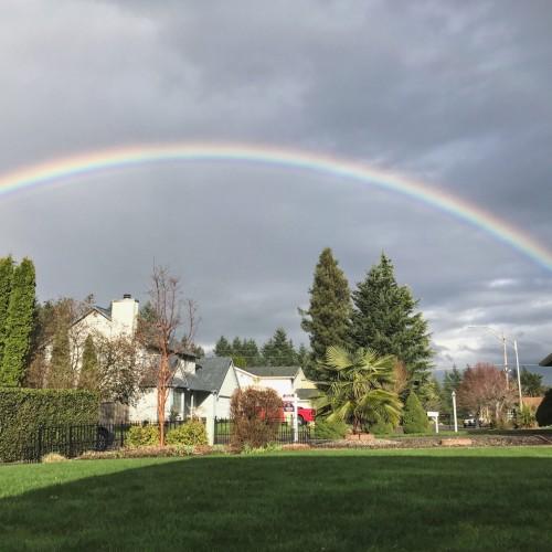 Rainbow: 185