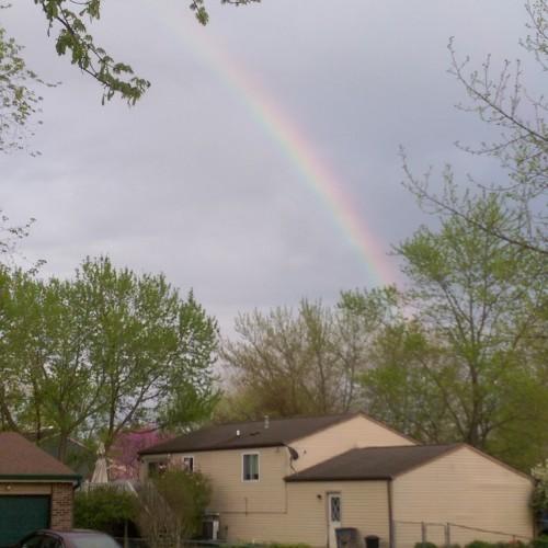 Rainbow: 179
