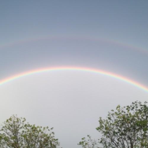 Rainbow: 227