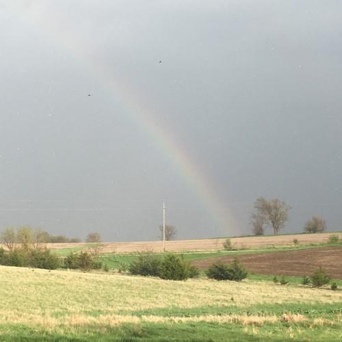 Rainbow: 181