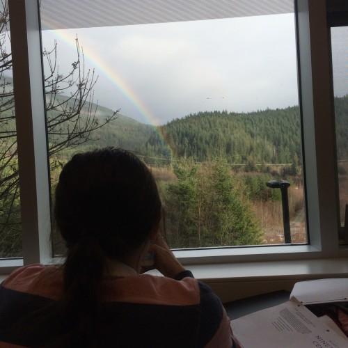 Rainbow: 50