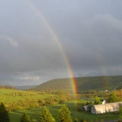 Rainbow: 15