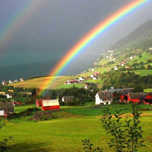 Rainbow: 31