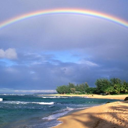 Rainbow: 36