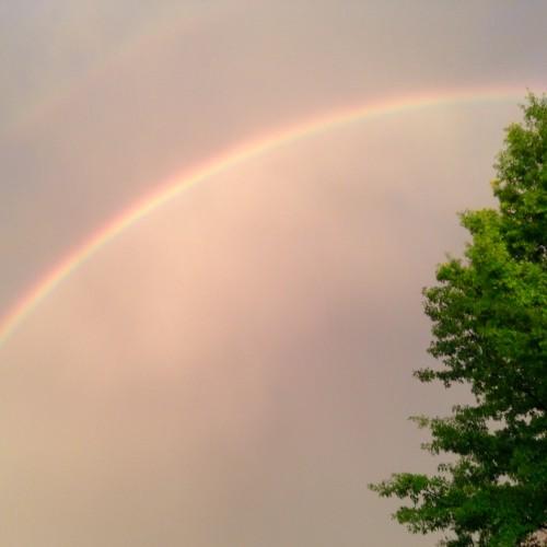 Rainbow: 119