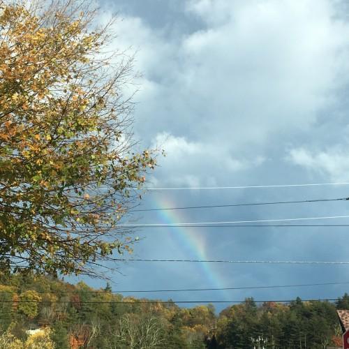 Rainbow: 233