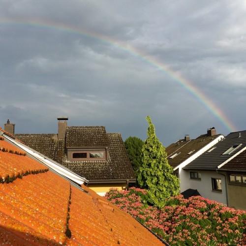 Rainbow: 139