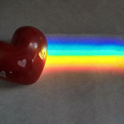 Rainbow: 246