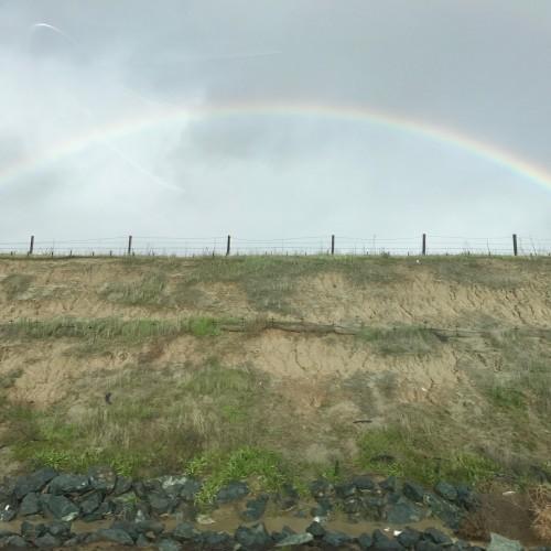 Rainbow: 162