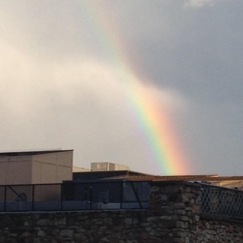 Rainbow: 219