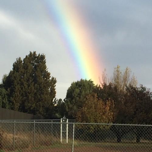Rainbow: 157