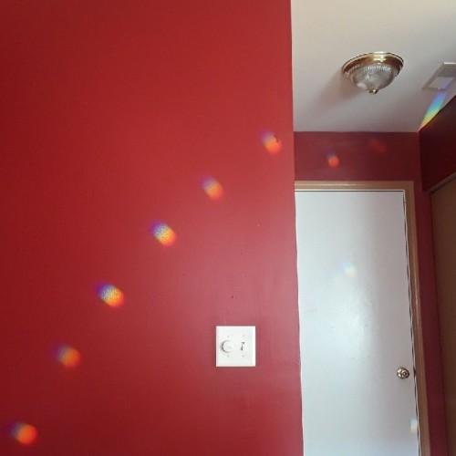 Rainbow: 226