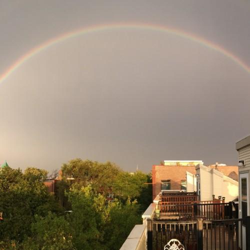 Rainbow: 245