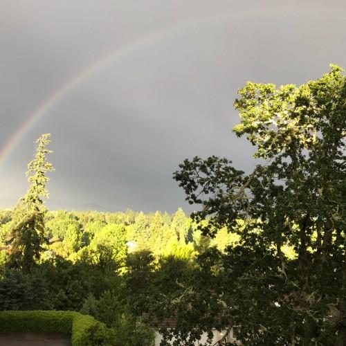 Rainbow: 195