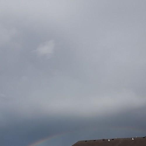 Rainbow: 216