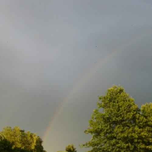 Rainbow: 196