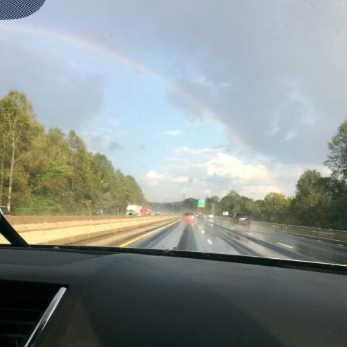Rainbow: 263