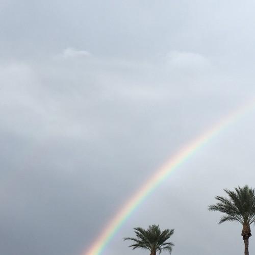 Rainbow: 159