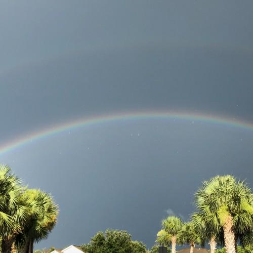 Rainbow: 252