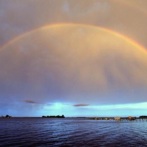 Rainbow: 206