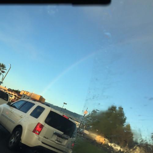 Rainbow: 164