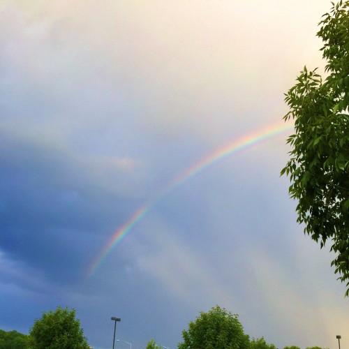 Rainbow: 220