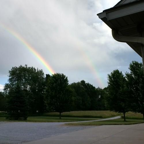 Rainbow: 235