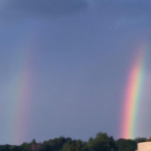 Rainbow: 133