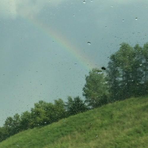 Rainbow: 254