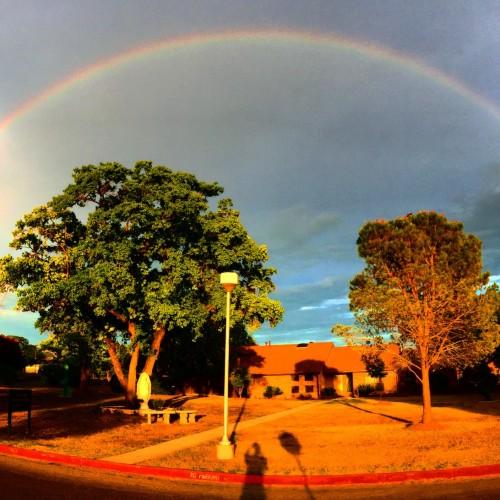 Rainbow: 204