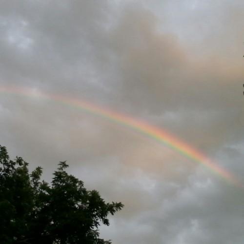 Rainbow: 202